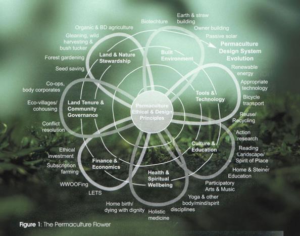 Die Permakultur-Blume