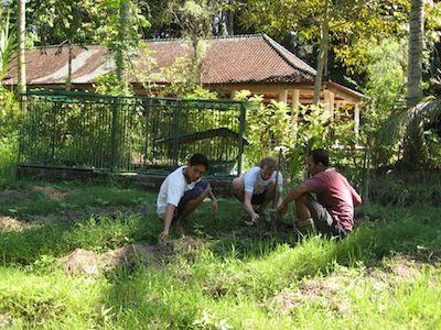 garden-work2_1000px